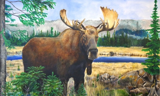 Into The Brush Moose on Canvas